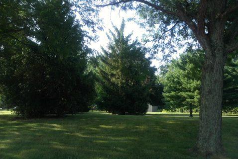 Grounds - Seton Square Marion - a BRC Properties location