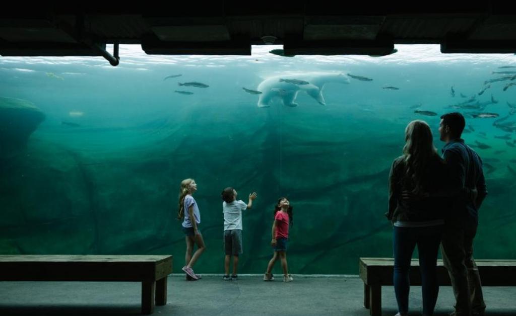 Columbus Ohio Zoo & aquarium